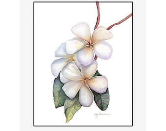 "Plumeria giclee print of an original watercolor painting on 100% cotton rag, soft texture, natural white, 20"" x 24"" matted and backed"