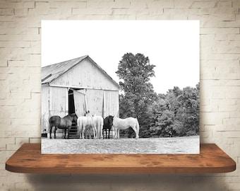 Horse Barn Photograph - Fine Art Print - Black & White Photo - Farmhouse Decor - Wall Art Decor - Equine Photography - Pictures of Horses