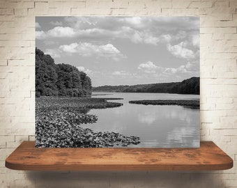 Lake Photograph - Landscape Photo - Fine Art Print - Black White Wall Decor - Nature Photography - Trees - Clouds - Lily Pads - Sky