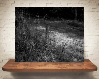 Barbed Wire Fence Photograph - Fine Art Print - Black White Photography - Wall Art - Wall Decor -  Farm Pictures - Farmhouse Decor - Country