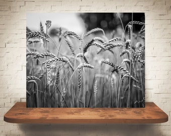 Wheat Photograph - Fine Art Print - Black & White Photography - Wall Art - Wall Decor -  Farm Pictures - Farmhouse Decor - Country Decor