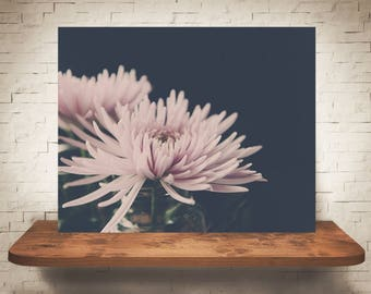 Pink Flower Photograph - Fine Art Print - Wall Art - Floral Decor - Wall Decor - Pictures of Spider Mums - Gifts - Floral Decor - Flowers