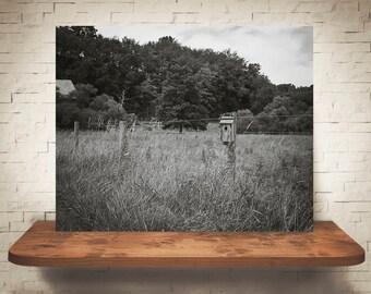 Birdhouse on Fence Photograph - Fine Art Print - Black & White Photography - Wall Art - Wall Decor -  Farm Pictures - Farmhouse Decor