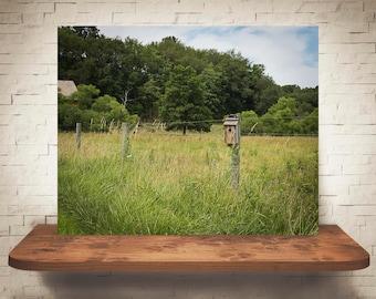 Birdhouse on Fence Photograph - Fine Art Print - Color Photography - Wall Art - Wall Decor -  Farm Pictures - Farmhouse Decor