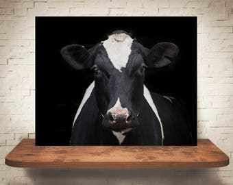 Cow Photograph - Fine Art Print - Color Photography - Wall Art - Home Decor - Wall Decor -  Farm Pictures - Farmhouse Decor - Cows