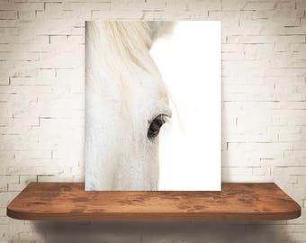 Horse Photograph - Fine Art Print - Color Photo - Wall Art - Farmhouse Decor - Wall Decor - Equine Photography - Pictures of Horses
