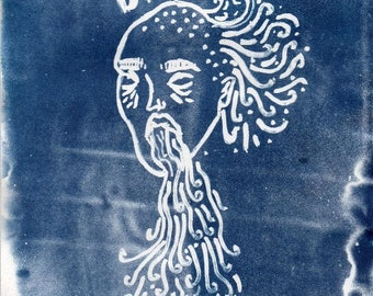 Cyanotype Illustration