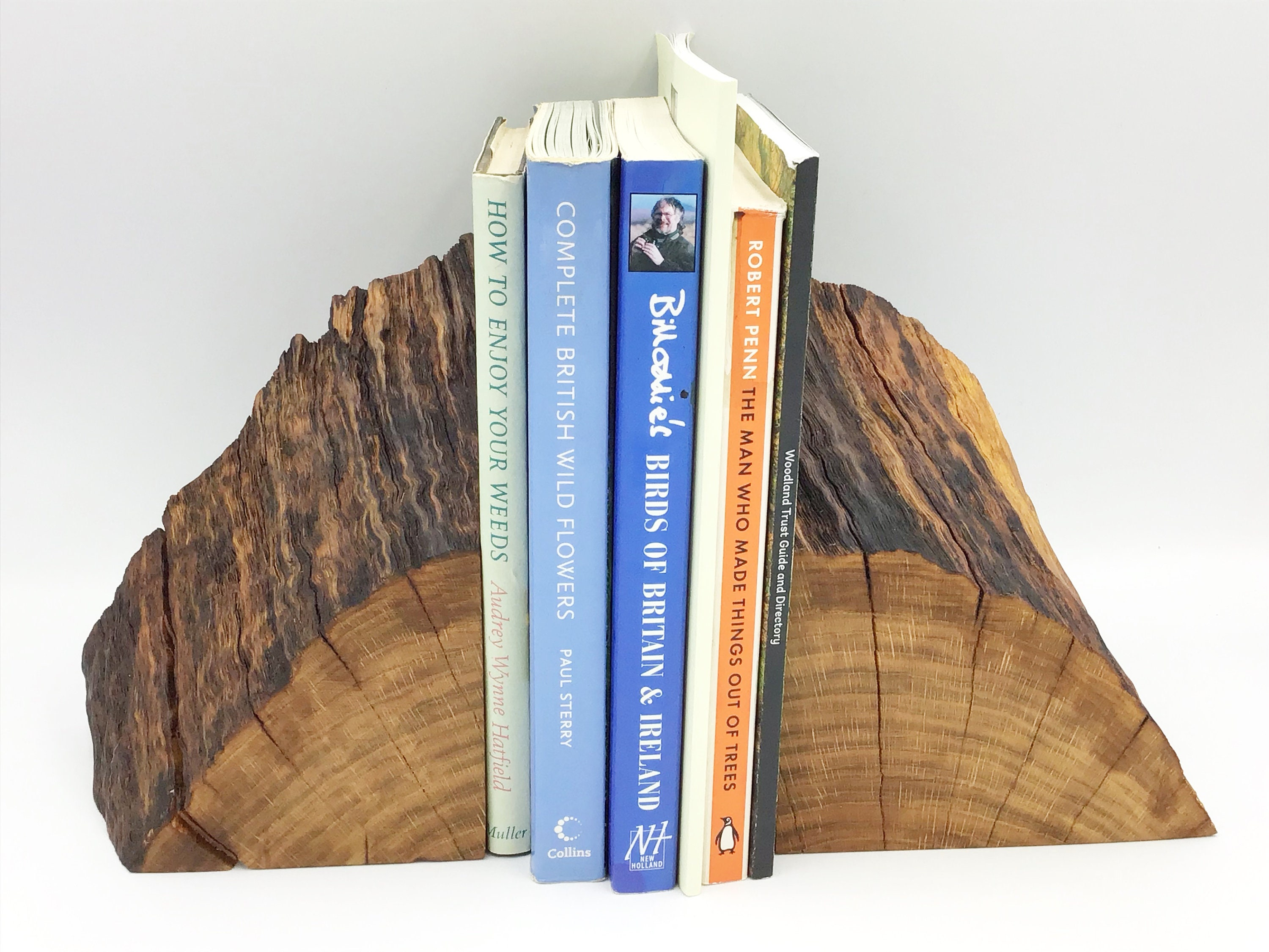 Bookends Bookend Pair Stylish Unique Book Lover Book Worm Gift Decorative Oak Branch Completely Unique Modern Rustic Home Decor Style