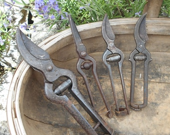 Four Vintage French Vine Pruning Tools. Genuine Vintners Pruning Shears. Authentic Vintage French Secateurs with Antique Patina.