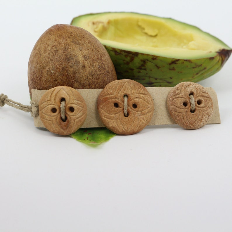 Avocado Pit Buttons, Natural Seed Buttons, Recycled Buttons, Sweater  Buttons, Novelty Buttons, Set of 3 Buttons, 1