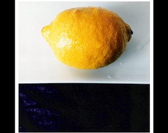 Lemon 5x5 Photograph