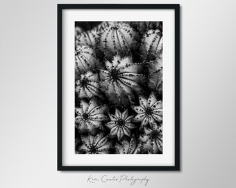 Black and White Cactus Photography Print   Modern Leaf Abstract   Macro Photography   Succulent Print   Abstract Cactus   Plant Photography