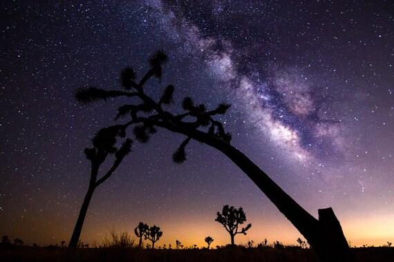 Joshua Tree National Park Print Night Sky Wall Art Milky Way Astrophotography Southwest Decor Desert Photography Galaxy Print