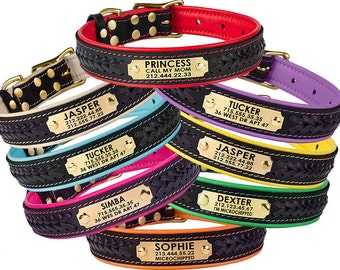 Leather Dog Collar Personalized ID Tag Braided Brass Hardware Soft Padded