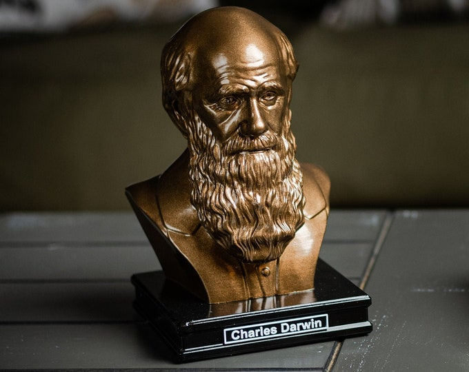 Featured listing image: Charles Darwin 8 inch Premium Solid Bust | Sculpture Art | Science Gift | Biology Gift | Library | Study | Classroom | Faces of History