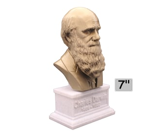 Charles Darwin Famous English Naturalist, Geologist, and Biologist 7 inch 3D Printed Bust