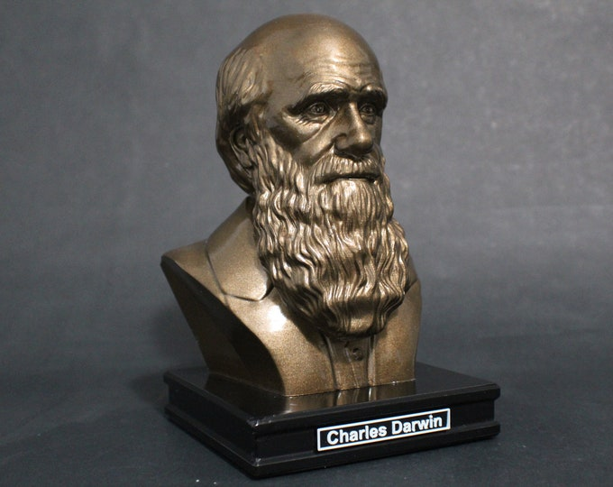 Featured listing image: Charles Darwin 8 inch Premium Bust Solid Hand Finished Original Dated Sculpture