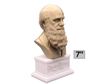Charles Darwin Famous English Naturalist, Geologist, and Biologist 7 inch Bust
