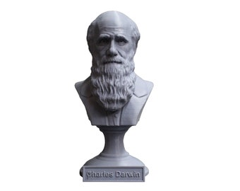 Charles Darwin Famous English Naturalist, Geologist, and Biologist 5 Inch Bust
