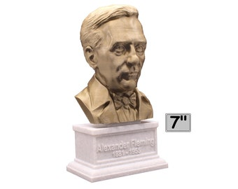 Alexander Fleming Famous Scottish Biologist, Physician, and Pharmacologist 7 inch Bust