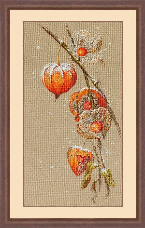 embroidery New Counted cross stitch kit Set for embroidery PANNA C-1837 Physalis