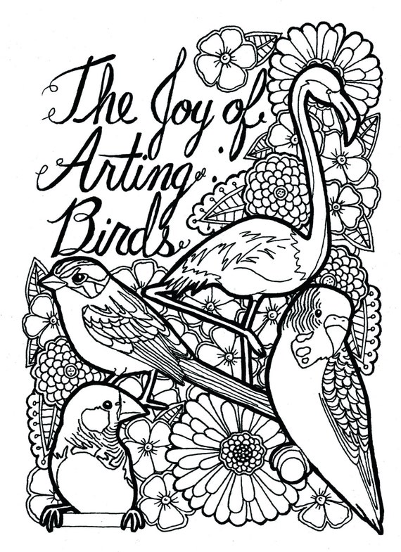 18 páginas de pájaros color de libro para colorear adultos | Etsy