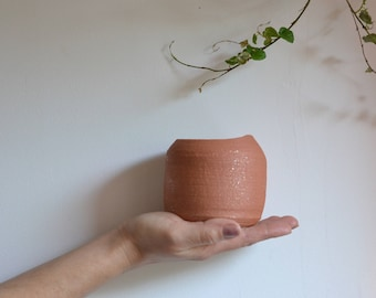 Terracotta pot for small plant