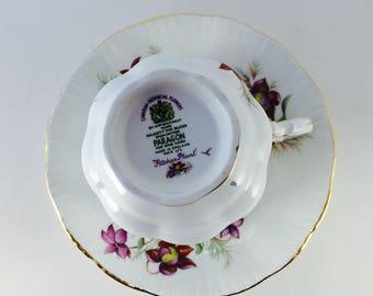 Cup and Saucer, PARADON, Floral