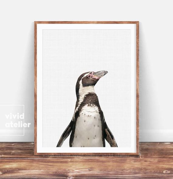 Penguin Print Penguin Wall Art Nursery Wall Art Decor | Etsy