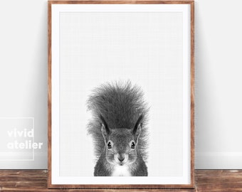 Black and White Woodland Nursery Animal, Squirrel Print, Forest Animal Wall Art, Baby Woodland Decor, Digital Print,Squirrel Photo Printable