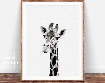 Giraffe Print, Giraffe Wall Art, Nursery Animal Prints, Giraffe Art Prints, Nursery Art, Nursery Decor, Nursery Wall Art, Nursery Prints