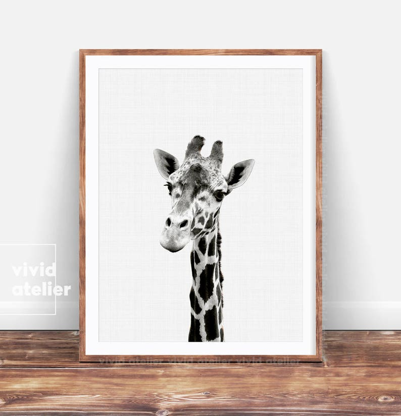 Giraffe Print Giraffe Wall Art Nursery Animal Prints image 0