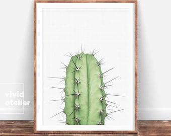 Cactus Print, Succulent Print, Cactus Wall Art, Cactus Printable, Cactus Poster, Digital Prints, Botanical Print, Downloadable Prints, Art