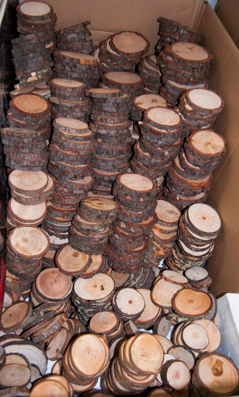 100 Discount Woodslices Assorted Pack of Wood Slices Tree image 0