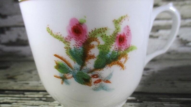 Moss Rose Pattern C Antique Haviland /& Co Teacup and Saucer 1880/'s Limoges France
