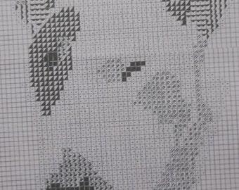 Bull Terrier 3 Dog Pattern