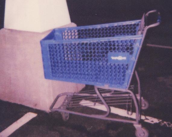 Polaroid Print: Cart