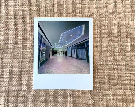 original signed Polaroid by Dan Bell - #23