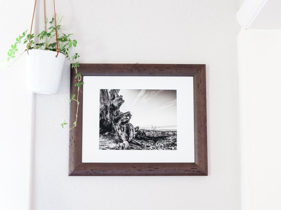 Original Framed Art Print  ||  Uprooted