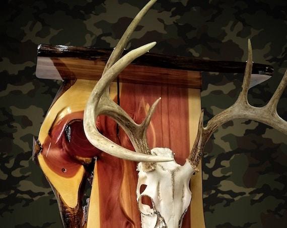 Whitetail European Deer Skull Rustic Knotty Cedar Wall Shelf Cabin Decor Gift, FREE SHIPPING