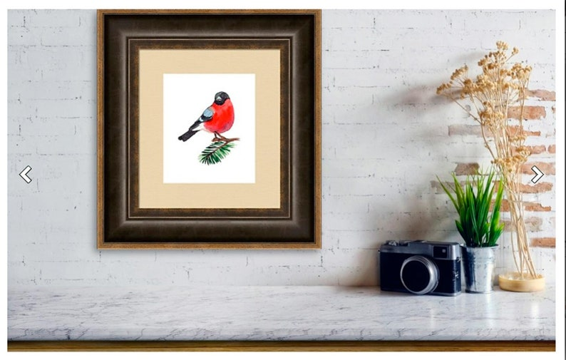 Watercolor bullfinch Christmas bird clipart Merry Christmas Christmas clipart for download Woodland Animals Scrapbooking