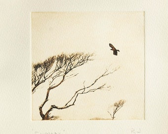 Original etching: 'Exmoor', hand-printed from a solar plate.