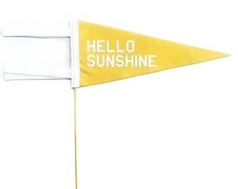Mini Pennant - Hello Sunshine