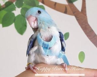 Escape-Proof!---Strong Material---For Smallest Friends--Bird Harness/ 160cm Length for Budgie,Parrotlet,/Bird Flight Suite //4 Color Options