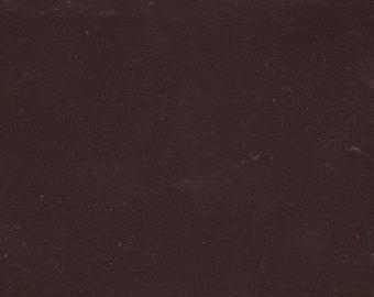 BTY 1981 Pontiac/Buick Burgundy/Wine Plush Velour
