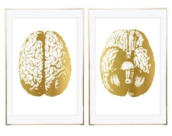 Brain Print, Human Brain, Gold Anatomy Art, Anatomy Print, Anatomy Poster, Gold Foil Print, Human Anatomy Art, Human Anatomy Print, Wall Art