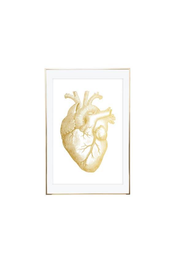 Heart Anatomy Print Gold Anatomy Art Anatomy Print Anatomy | Etsy