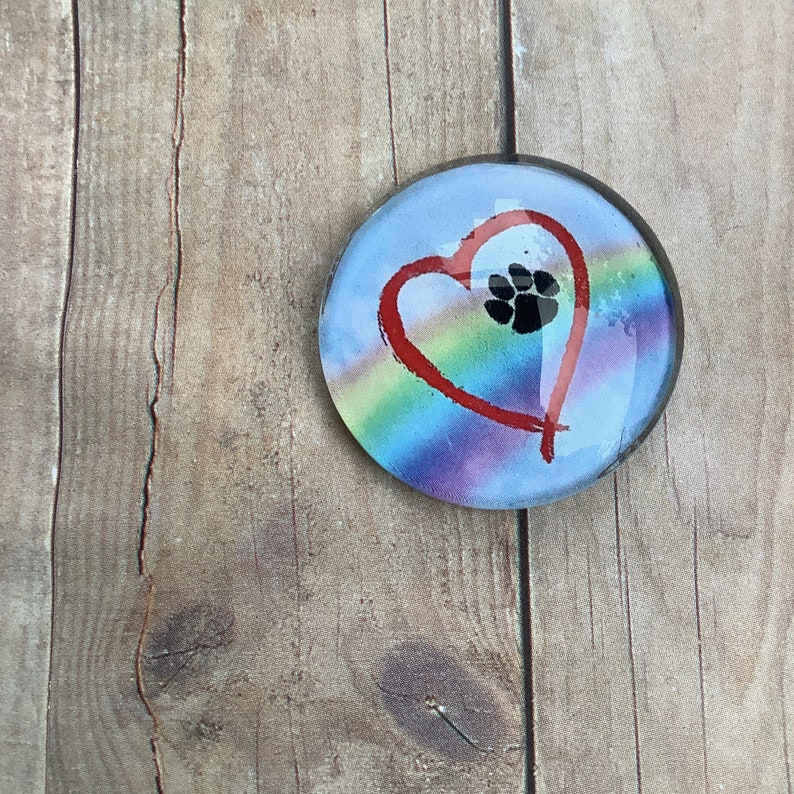 Pet Memorial Gift Dog Loss Gift Pet Lover Gift Dog Paw Necklace Dog Memorial Gift Rainbow Heart Necklace Glass Pendant Necklace