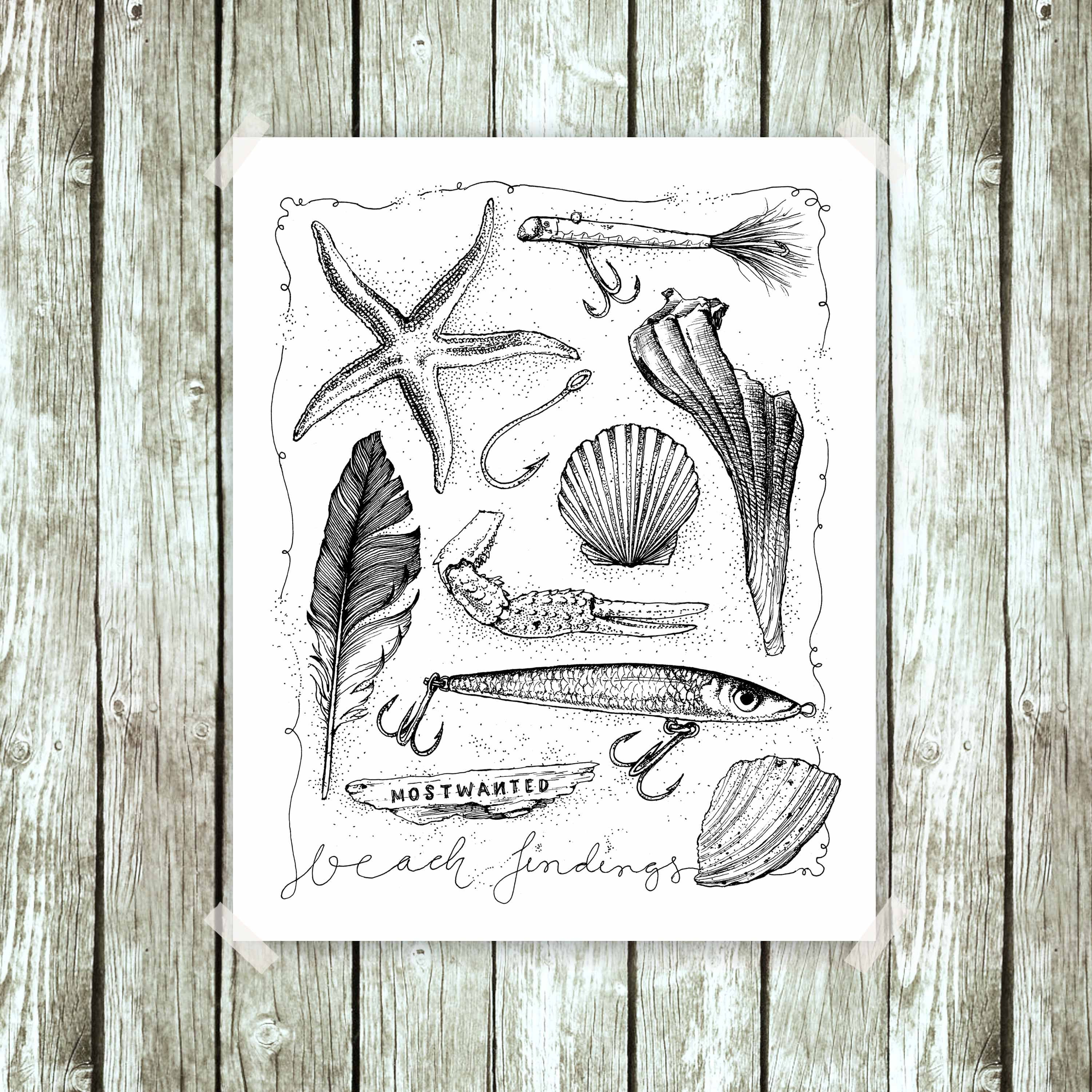 sea shells pen /& ink drawing Beach Findings luers starfish Framed poster feather fishing hook Flotsam