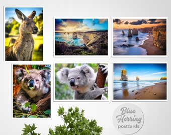 Australia Postcard, Six Pack, Set of 6, Australia Travel, Australian Koala and Kangaroo, Twelve Apostles, Great Ocean Road, hello postcards